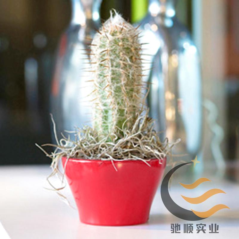 玻璃鋼花盆 (37).jpg